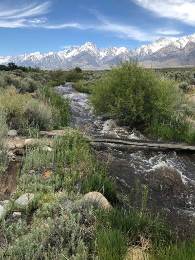 Water Flow OVGA